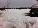 Woodsom Farm Field 20Mar15